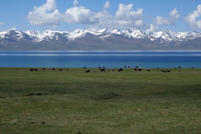 song-kul-lake-18.jpg